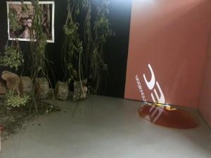 Exhibition at CCSP
